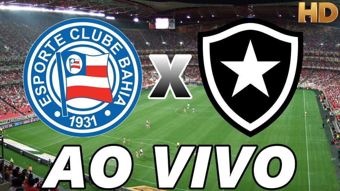 Assistir Bahia x Botafogo ao vivo - Foto/Divulgação