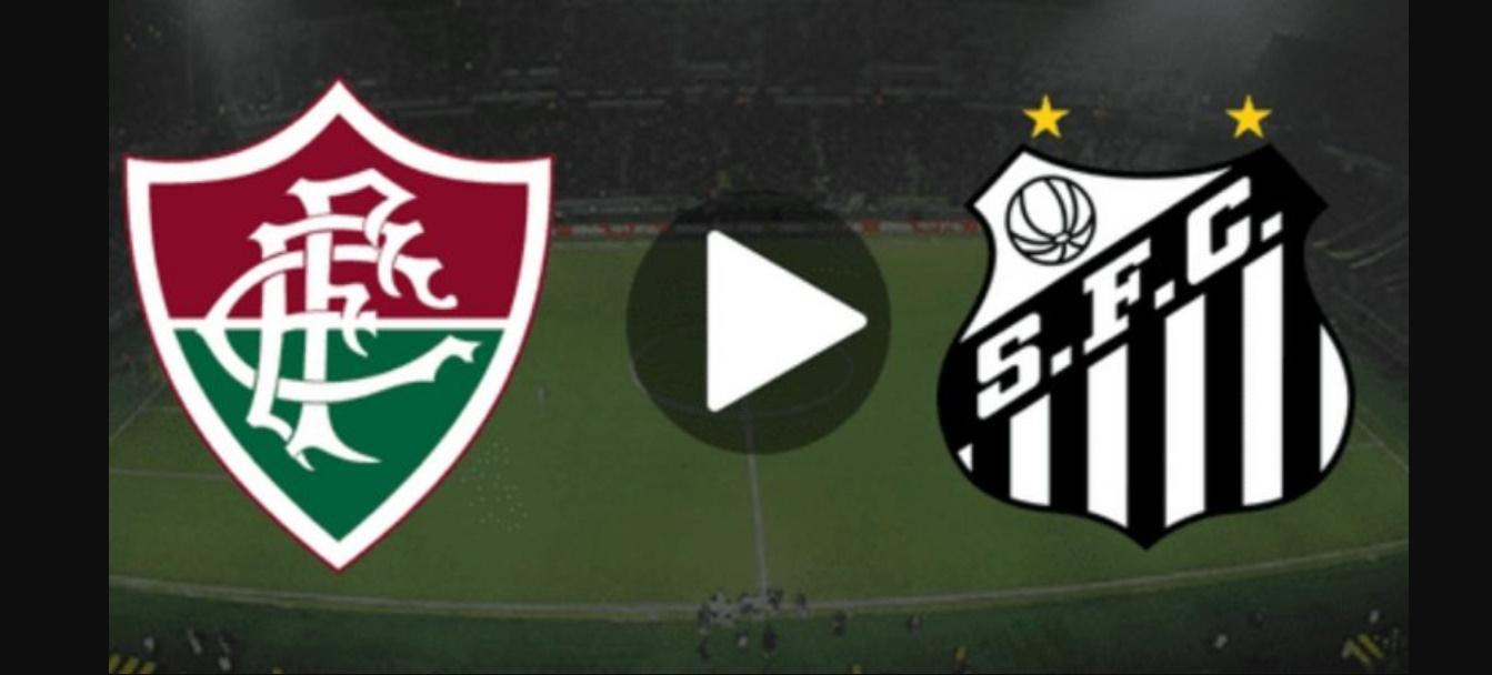 Santos x Fluminense ao vivo online - Foto/Divulgação