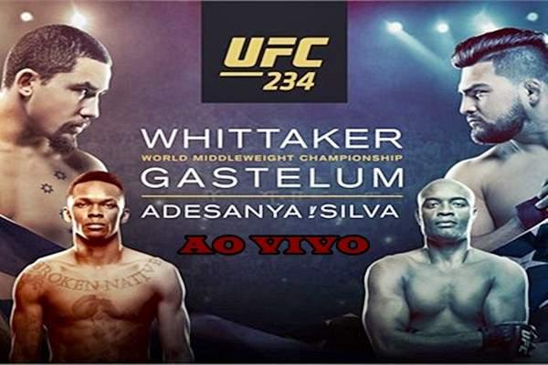 Luta Anderson Silva no UFC 234. Foto/Divulgação