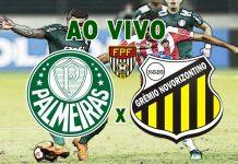 Onde assistir Palmeiras x Novorizontino ao vivo. foto/Montagem