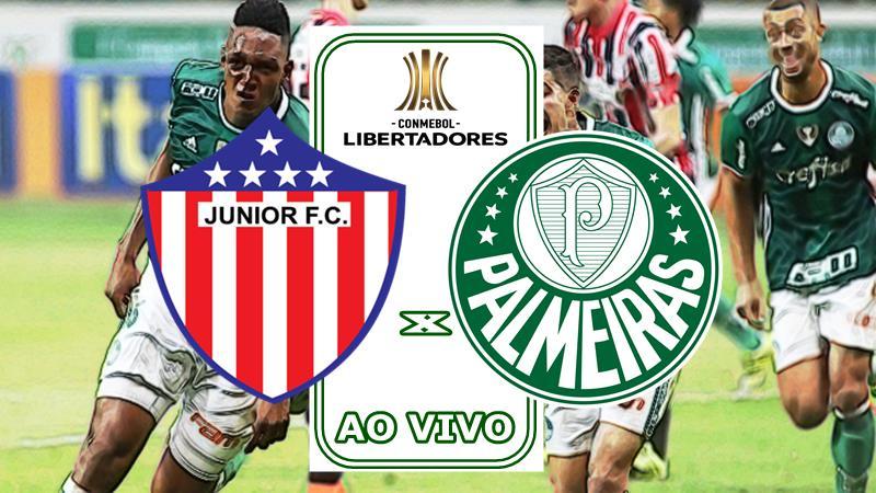 Jogo Do Palmeiras Ao Vivo Como Assistir Palmeiras X