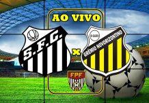 Onde assistir jogo Santos x Novorizontino ao vivo. Foto/Montagem