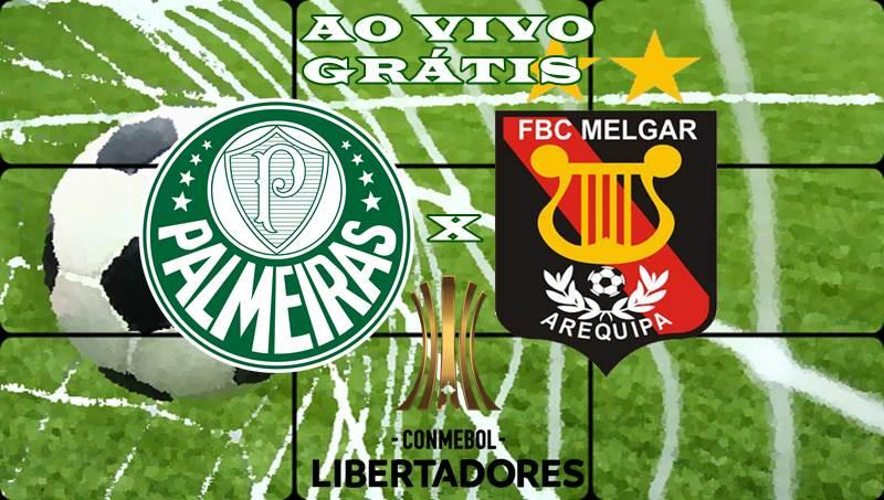 Melgar X Palmeiras Ao Vivo Online Gr U00e1tis Veja Onde