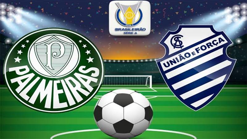 Palmeiras x CSA ao vivo: onde assistir Palmeiras hoje