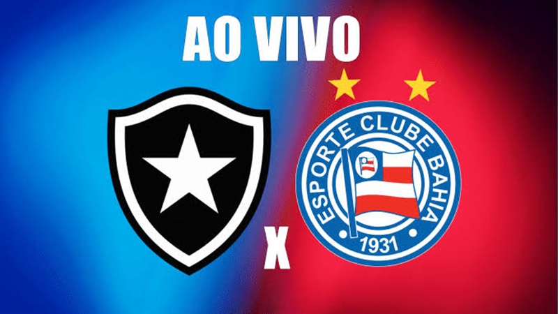 Botafogo x Bahia ao vivo: como assistir online grátis