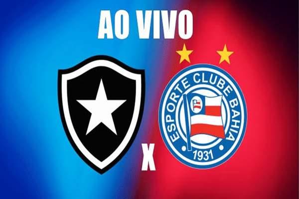 Bahia x Botafogo ao vivo: como assistir jogo na internet